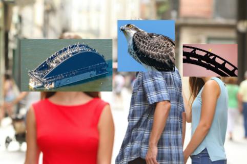 Naam:     bird.png Bekeken:  291 Groote:   276,7 KB